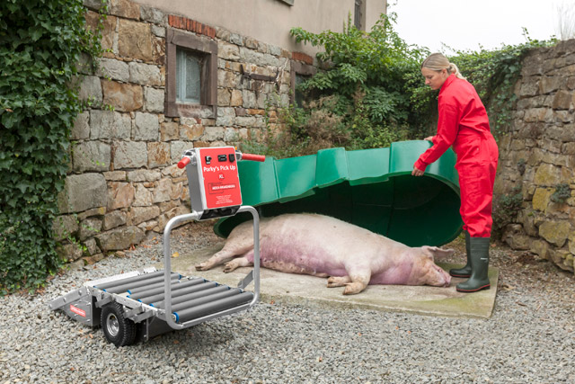 With Porky's Pick Up XL, the user can load comfortably sows up to 300 kg and transport it on the trolley to the carcass place. Even farms which are coated with broken stones are no barrier.
