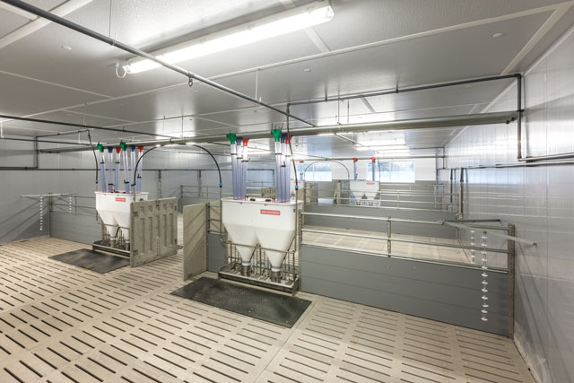 View of a typical fattening pen at Meier-Brakenberg. These are Meier-Brakenberg automatic feeder in a drinking system circulation line. Robust protective floor plates protect slatted floors.